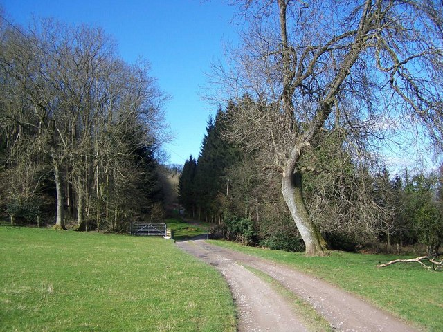 Footpath To Bredwardine Hill