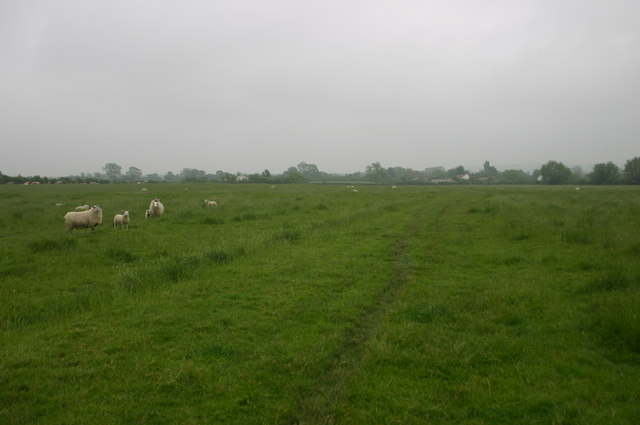 Footpath nearing Ludgershall