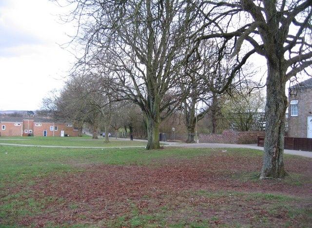Open ground in Winklebury