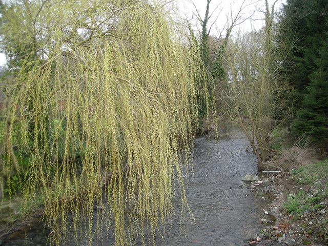 Cound Brook, Condover