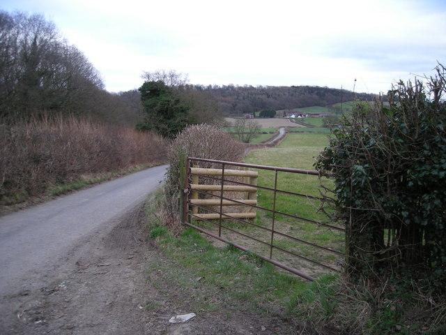 Lane to Much Wenlock