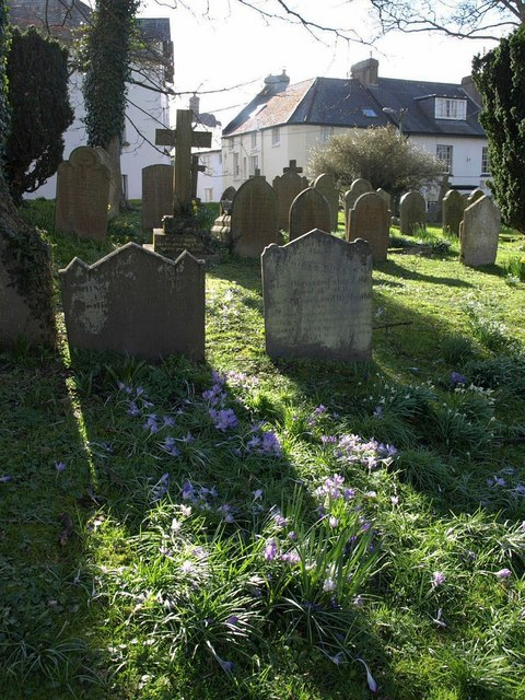Gravestones and crocuses, Chagford