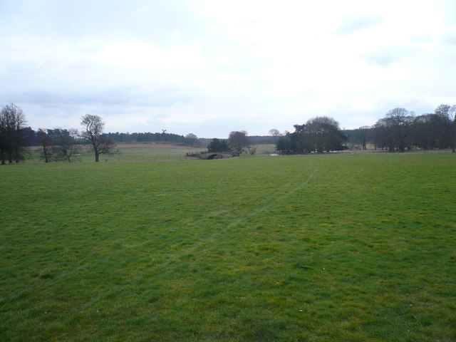 Thoresby Hall Estate View
