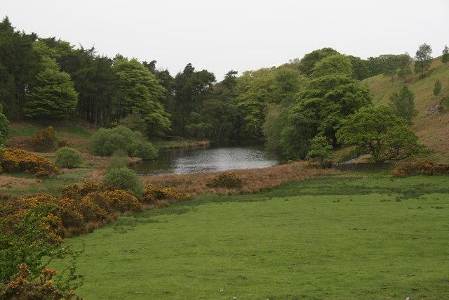 Small Lake near Rigg Lane