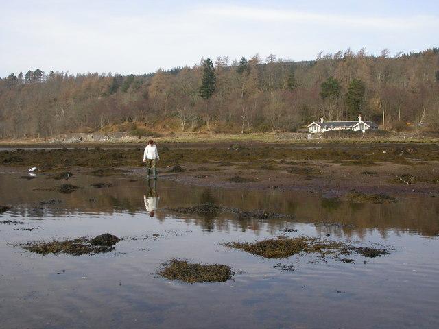 Kinlochaline, low water
