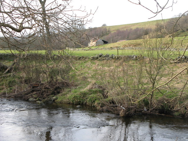 The north bank of the River East Allen near Bridge Eal