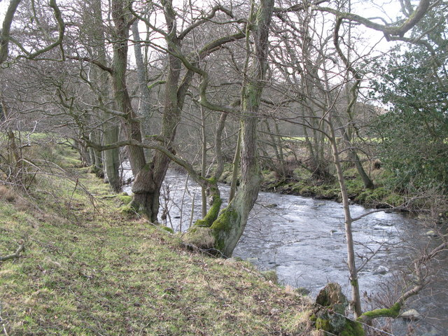 The River East Allen near Bridge Eal