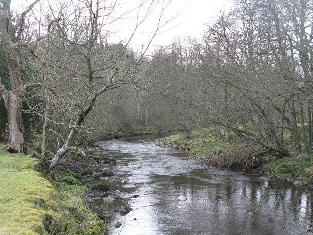 The River East Allen between Bridge Eal and Kittygreen