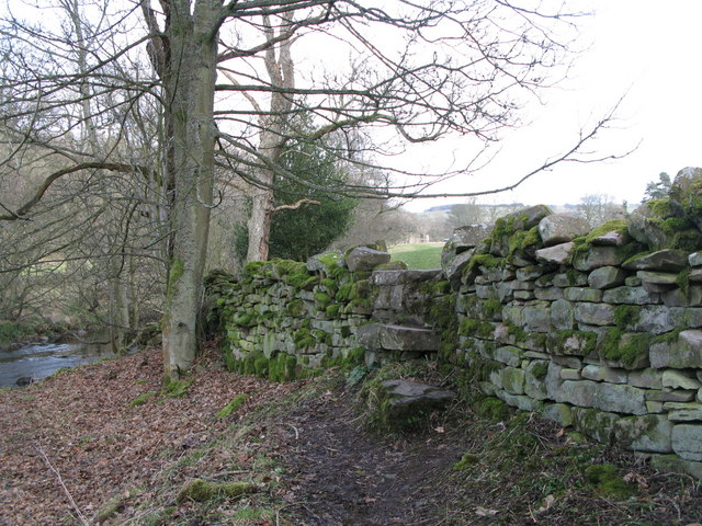 Stone stile on the path between Allenmills Bridge and Oakpool
