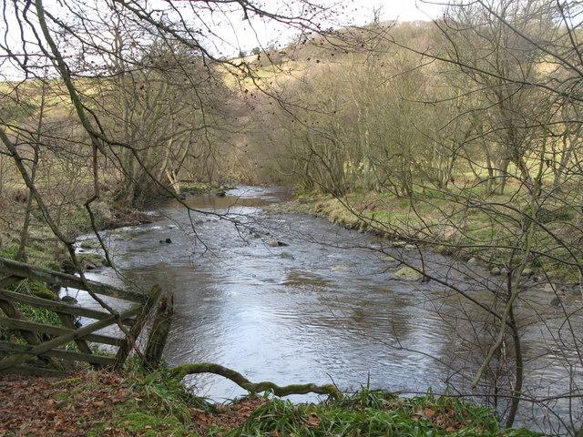 The River East Allen near Kittygreen (2)