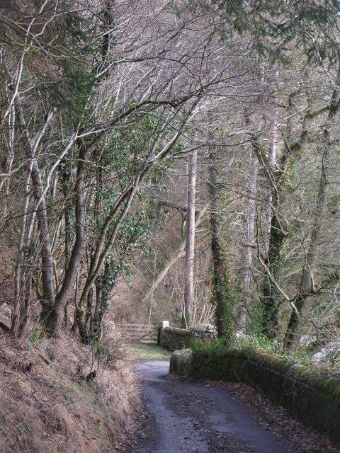 Colliery Lane