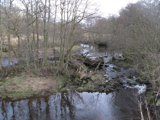 Small island in the River East Allen near Oakpool