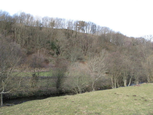The valley of the River East Allen near Bridge Eal