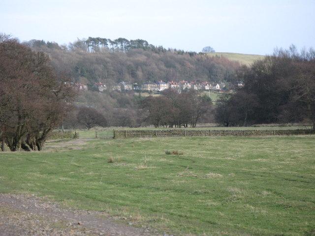 Haugh near Bridge Eal (2)
