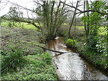 SW6833 : River Cober - downstream by Jonathan Billinger