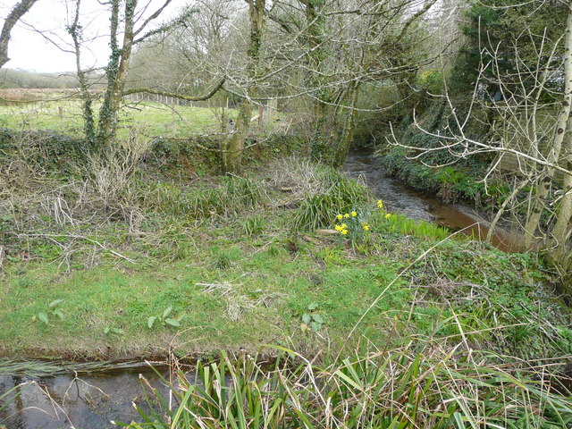 River Cober - upstream