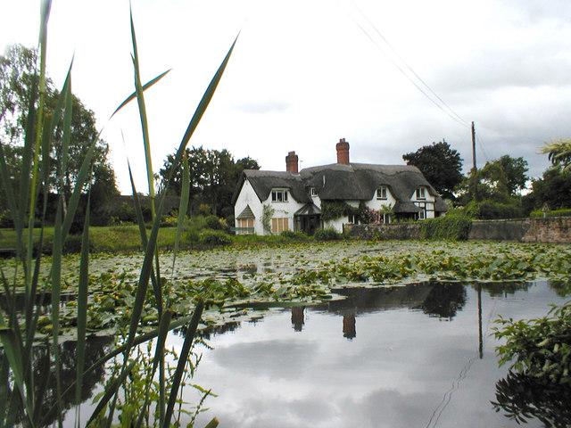Pond & thatched cottage at Badger