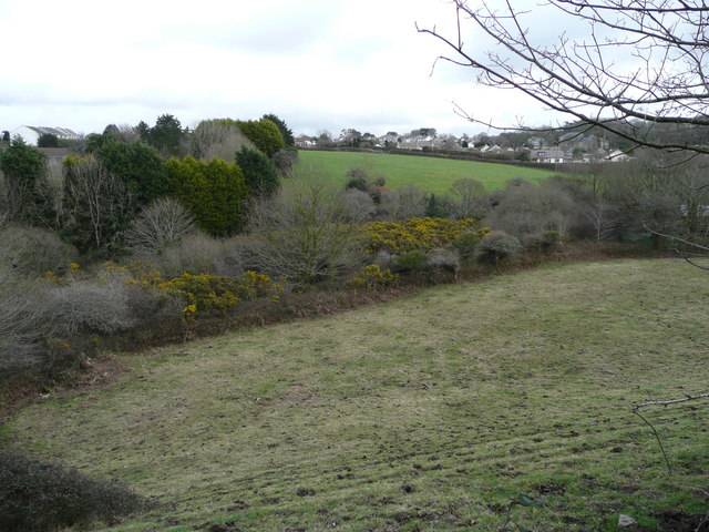 Wooded valley at Carn Brea