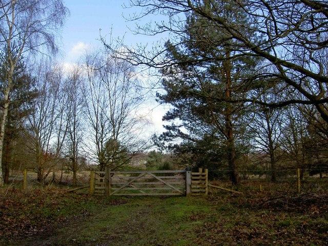 Clumber Park gate