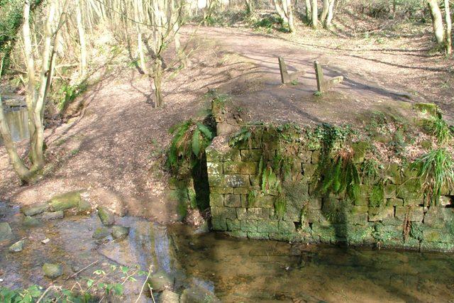 Old Bridge Abutment, Loftus Wood