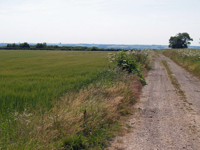 Track on Saxby Wolds