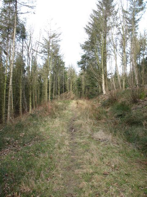 Bridleway near Over Silton