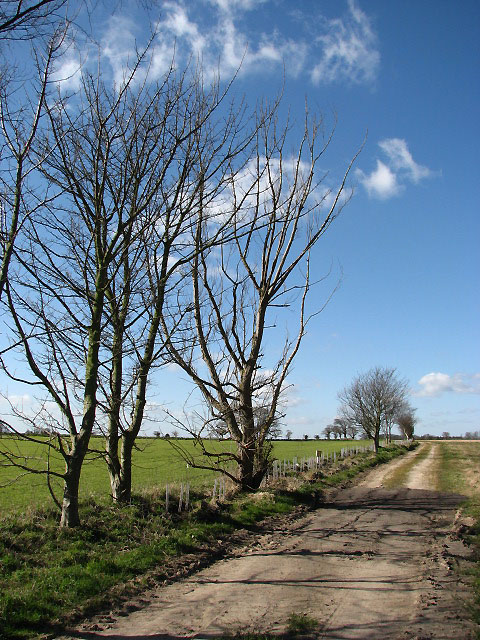 Farm track west of the A149