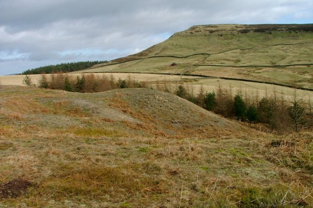 Jet Spoil Tips, Cringle Moor Plantation