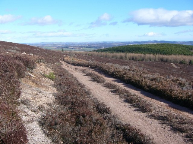 Track from Meikle Tap