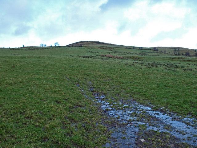 Near Hill of Barnaigh