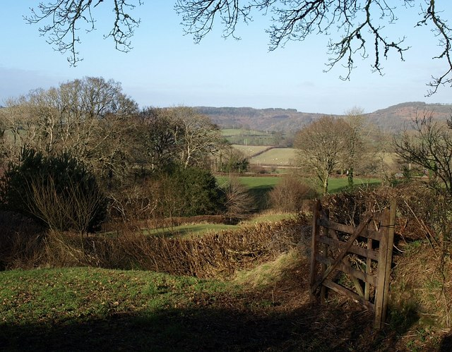 Fields east of Chagford