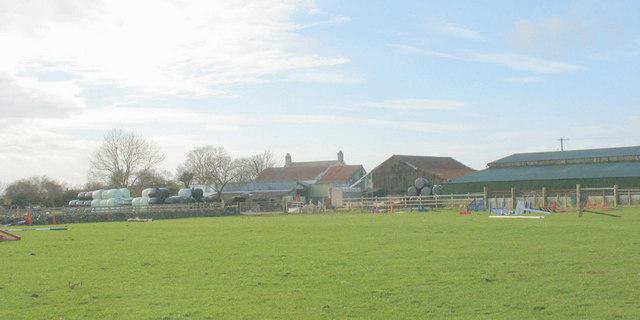 Bryn Llan Farm