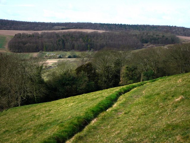 Looking towards Yew Down and Henwood Down from Park Hill, East Meon
