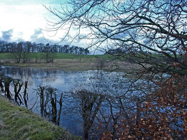 Wet land, near Lawmarnock Farm