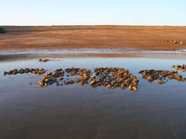 Diggings, Shoreham Beach