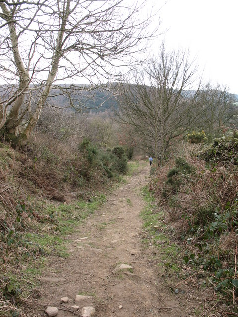 Green Lane, Osmotherley