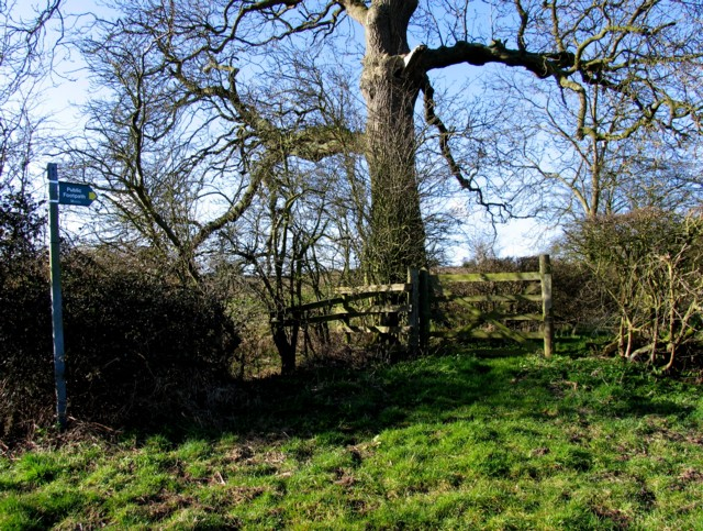 Gate to the fields