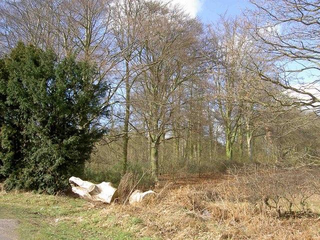 Log barrier