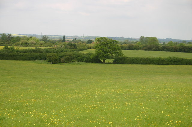 Meadow looking towards Ludgershall
