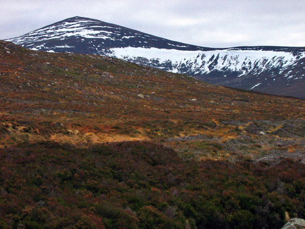 The view towards Mount Keen 939m