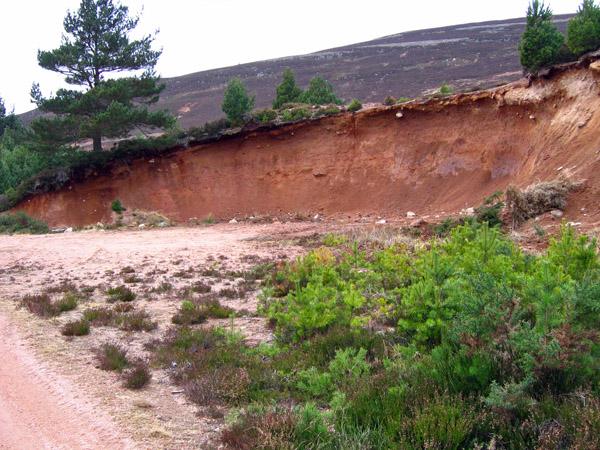 Gravel pit, Glen Tanar