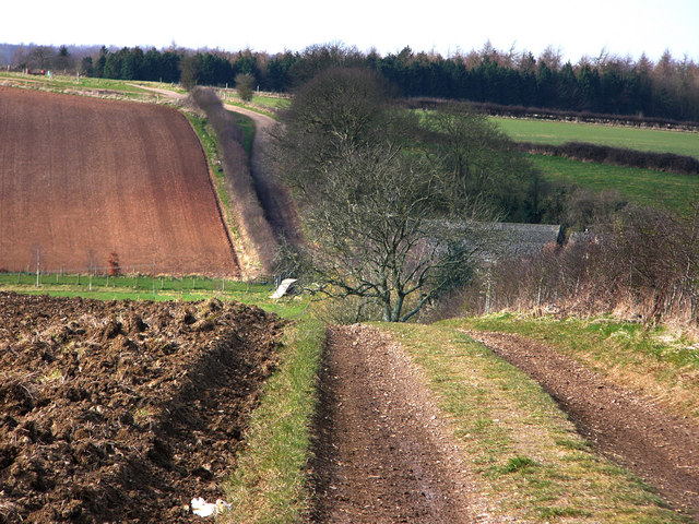 Track near to Park Cottages