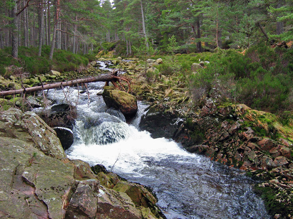 Water of Allachy, Glen Tanar