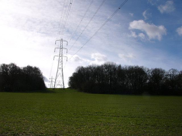 Pylons, looking towards Rookham Copse