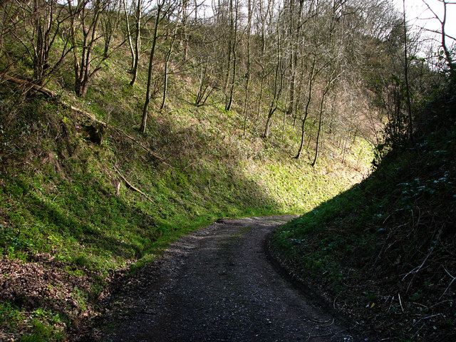 Track descending Sir William's Hill