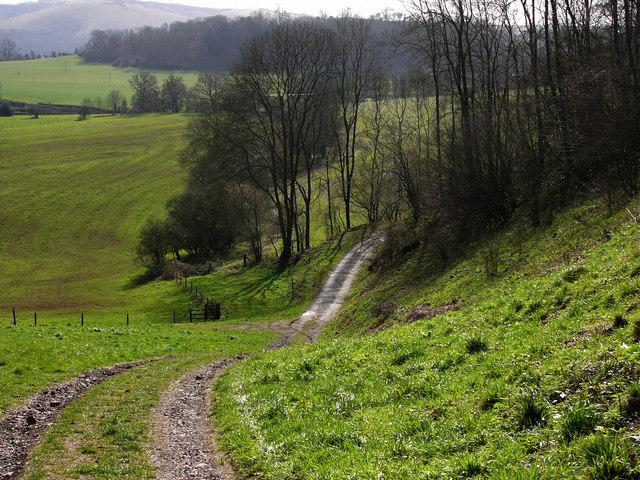 Track descending Sir William's Hill