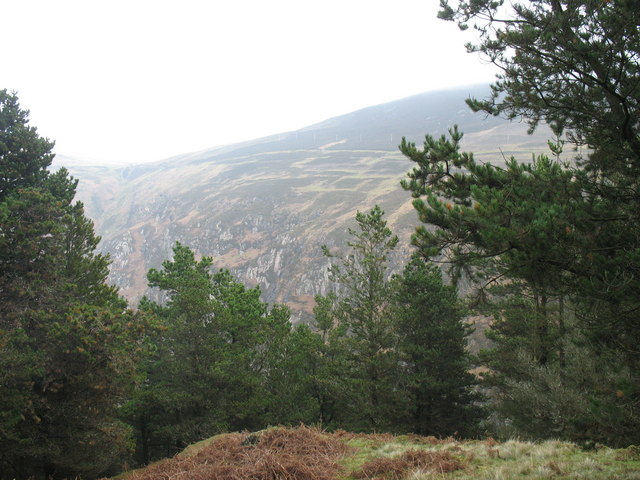 Graig Ddu seen from a clearing in the forest