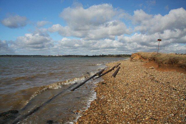 River Stour flotsam