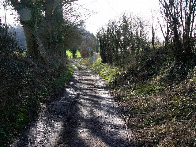 Pidham Lane, near Ramsdean