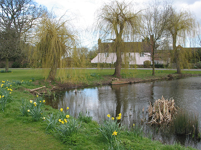 Location, location, location - the village pond, Apperley